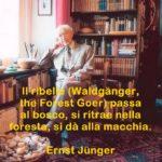 Aforismi e citazioni di Ernst Jünger