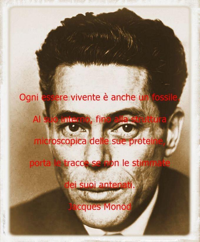 L'etica di Jacques Monod