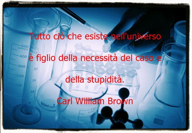 Universo, caso, necessità e stupidità.