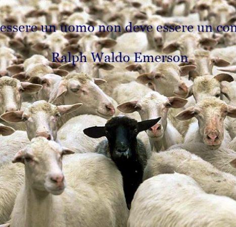 Popolo di pecore