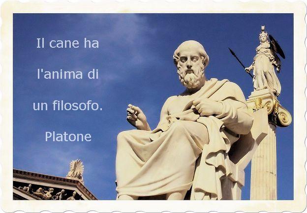 I mitici aforismi di Platone